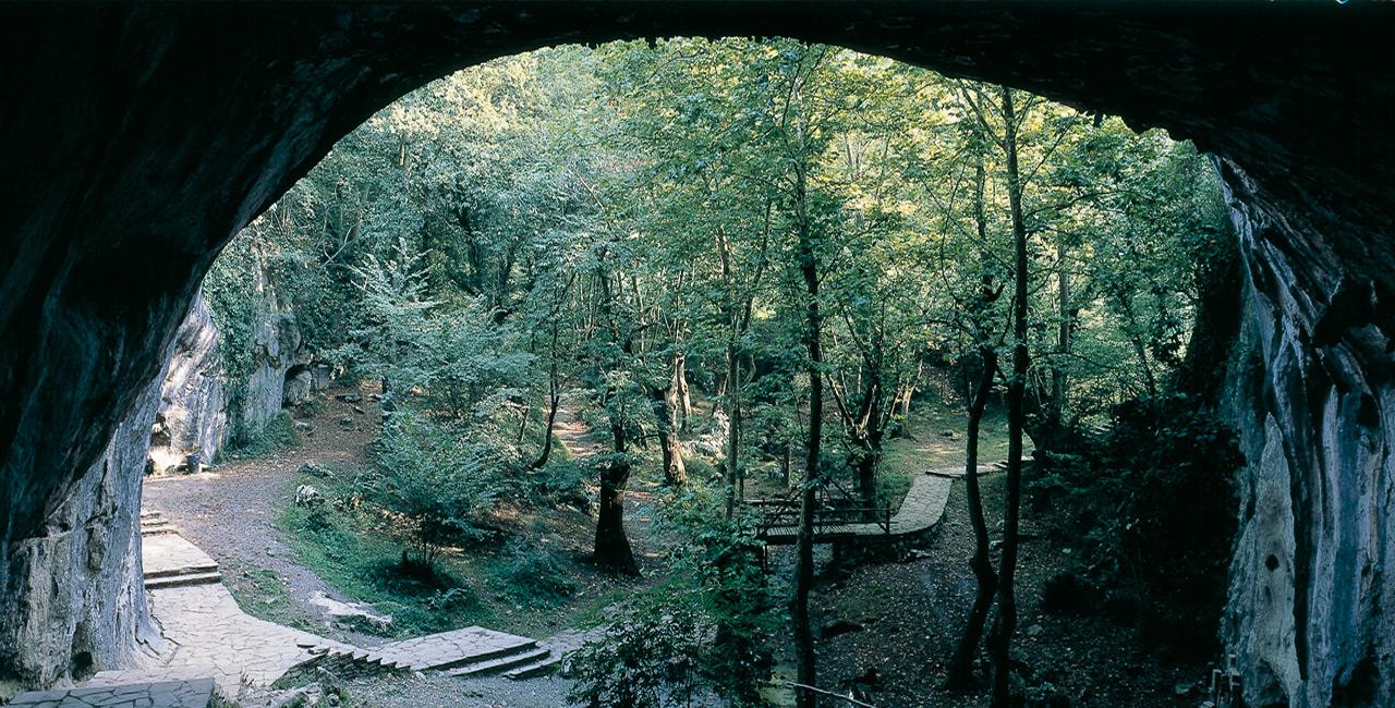 Cueva Navarra Bajamar